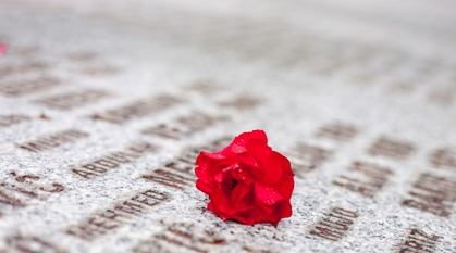 close up of red flower resting on white Srebrenica memorial stone